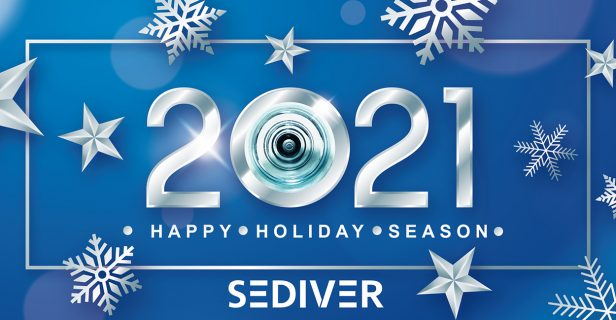 Look back on 2020 - Sediver